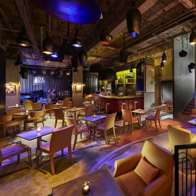 Cool Cats, Where Slick Jazz Tunes and Sound Cocktails Collide
